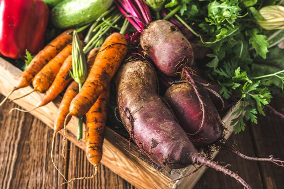 The Dunkirk – Fresh Vegetables